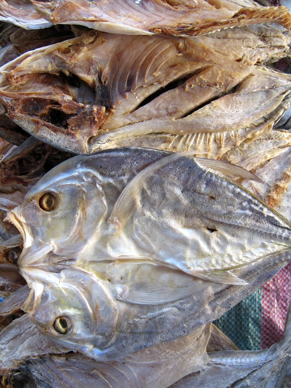 Dried fish talakitok trevally or jack retired no way for Dried salted fish