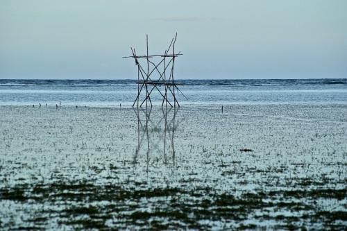 """Fishing Platform """"Intertidal Zone"""""""