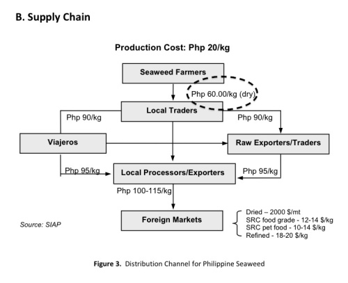 "BFAR ""Value Chain"" ""Supply Chain"" Seaweed Philippines"