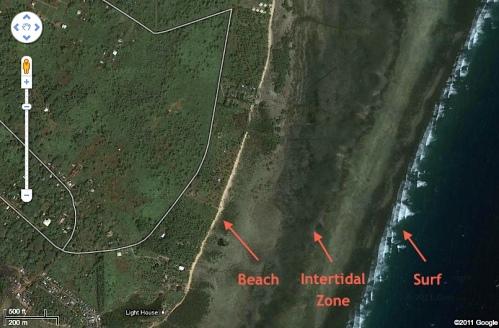 """Puerto Princesa"" ""Bancao"" beach ""Intertidal Zone"" ""Littoral Zone"""