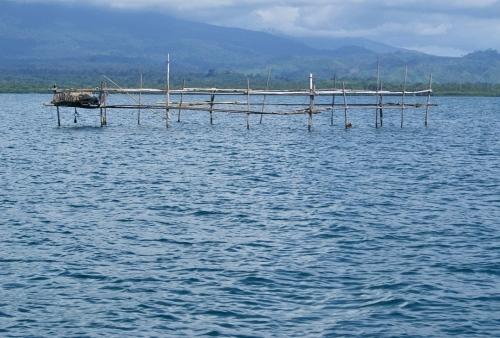 Tangkal Double-Island Isugod Quezon Palawan