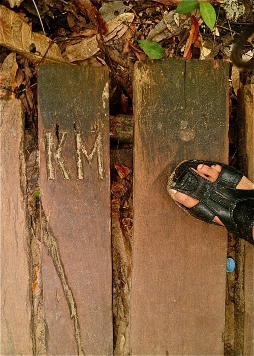 """Recycled plank"" retirednoway"