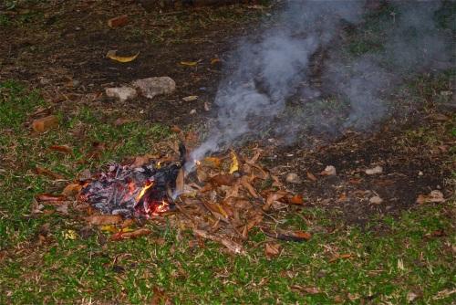 """Leaves are burned every few weeks"" retirednoway"