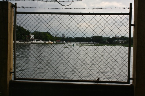 Looking east and upstream down the Pasig River. Malacanang Palace (the seat of government) is on the left bank. See it?